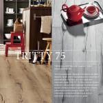 TRITTY 75 (31 класс)