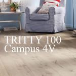 Campus 4V (32 класс)