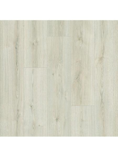 Ламинат Kaindl (Каиндл) Natural Touch Standart Plank K4419 Дуб Эвок Делайт