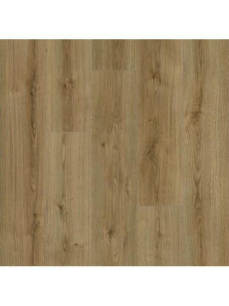 Ламинат Kaindl (Каиндл) Natural Touch Standart Plank 33кл K4421 Дуб Эвок Тренд